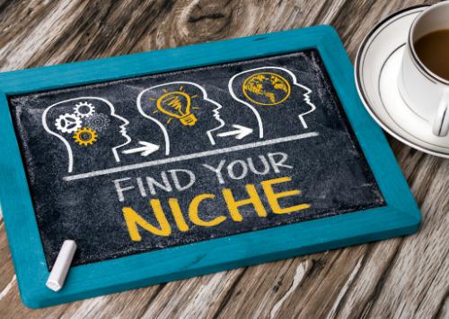 entrepreneur - find your niche